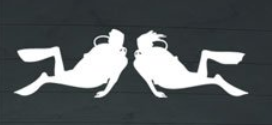 dive sticker for couples or just her