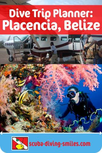 scuba diving in placencia, belize