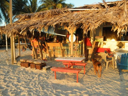 the pink seahorse tiki bar on roatan