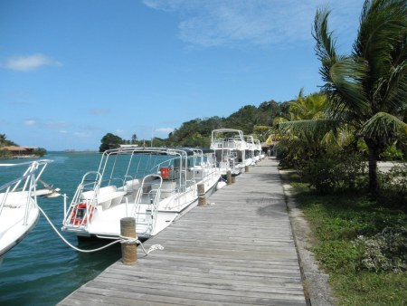 dive boats at anthony's key resort, roatan