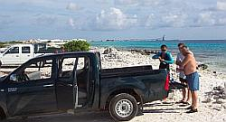 bonaire shore diving