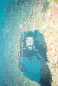 picture of scuba divers