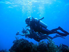 scuba cozumel - drift dive