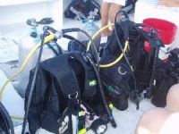 drift diving cozumel