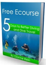 scuba diving ecourse
