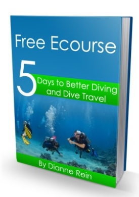 Free scuba diving ecours