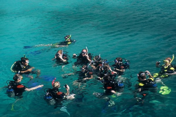 Scuba diving class wearing wetsuits