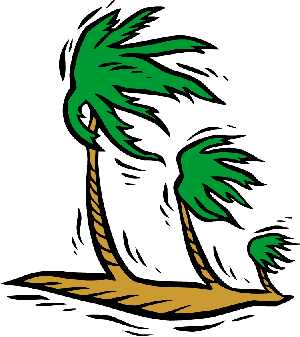 Palm tree clipart blowing in the win