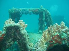 aruba diving - pedernales