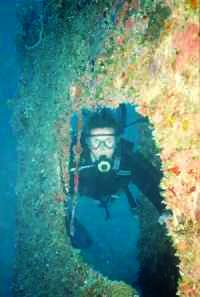 pictures of scuba divers