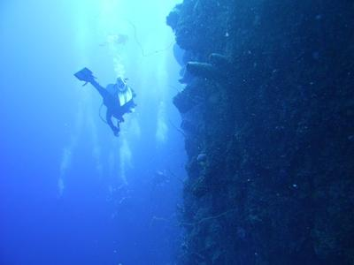 Bloody Bay Wall, Little Cayman, Underwater