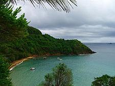Tobago divin
