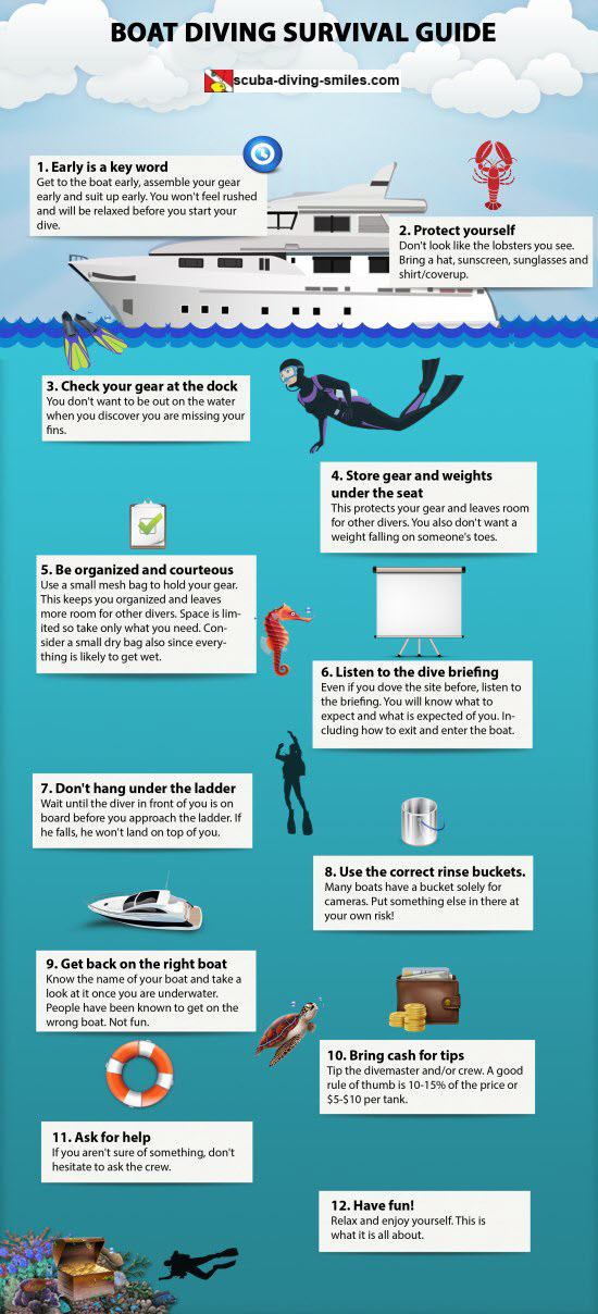 Boat diving infographic tips for the beginning scuba diver