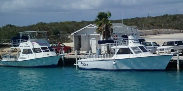 Scuba diving in the Turks and Caicos, just south of the Bahamas