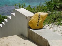Bonaire diving - Karpata dive site