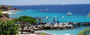 bonaire diving - bari reef dive site
