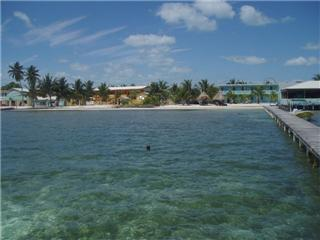 scuba diving belize caye caulker